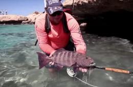 nubia-flyfishing