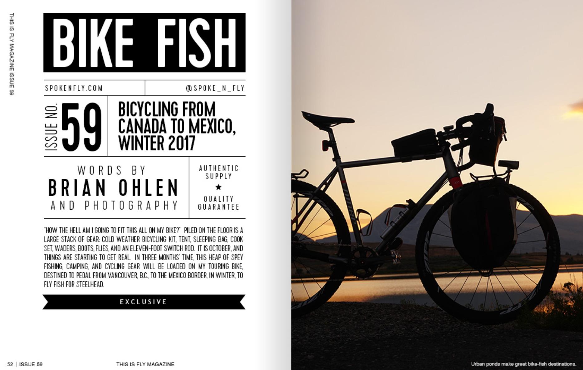 bike-fish