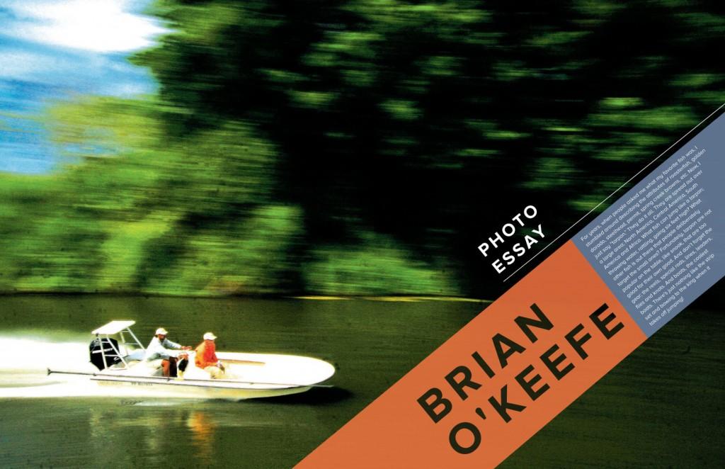 brian-