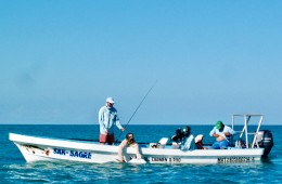 boat-punta