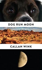Dog Run Moon Stories US