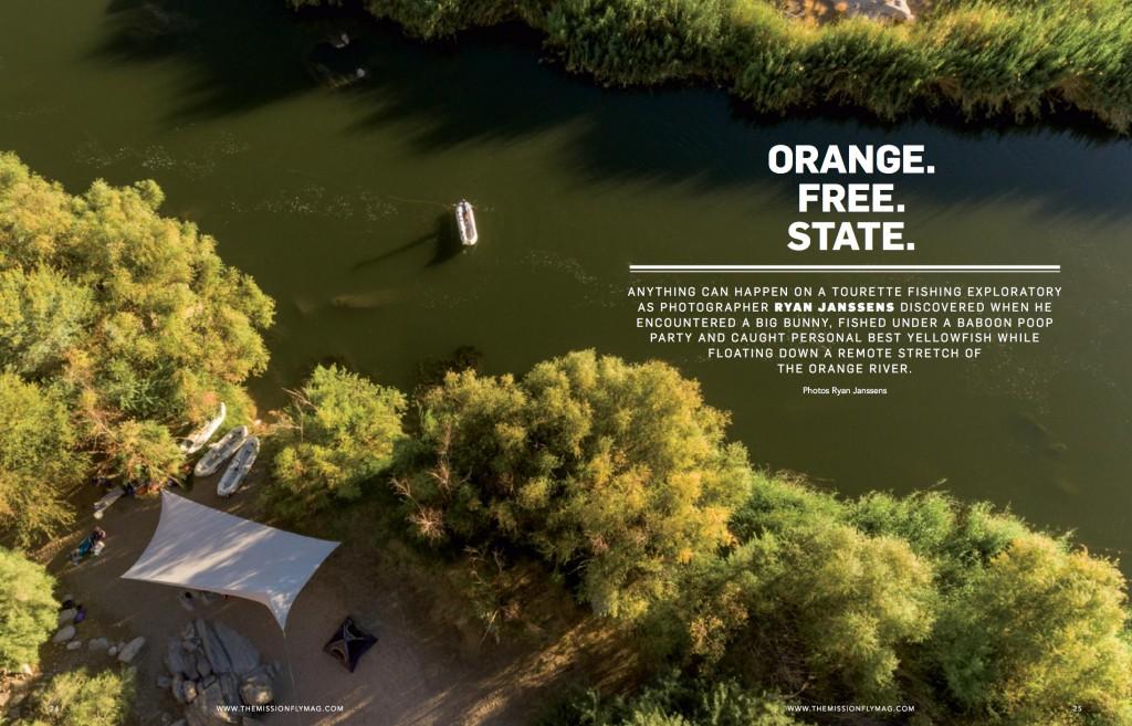 orange-free-state
