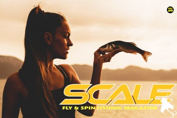 scale-cover