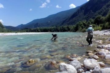 Le Mouching Pêche à La Mouche Fly Fishing