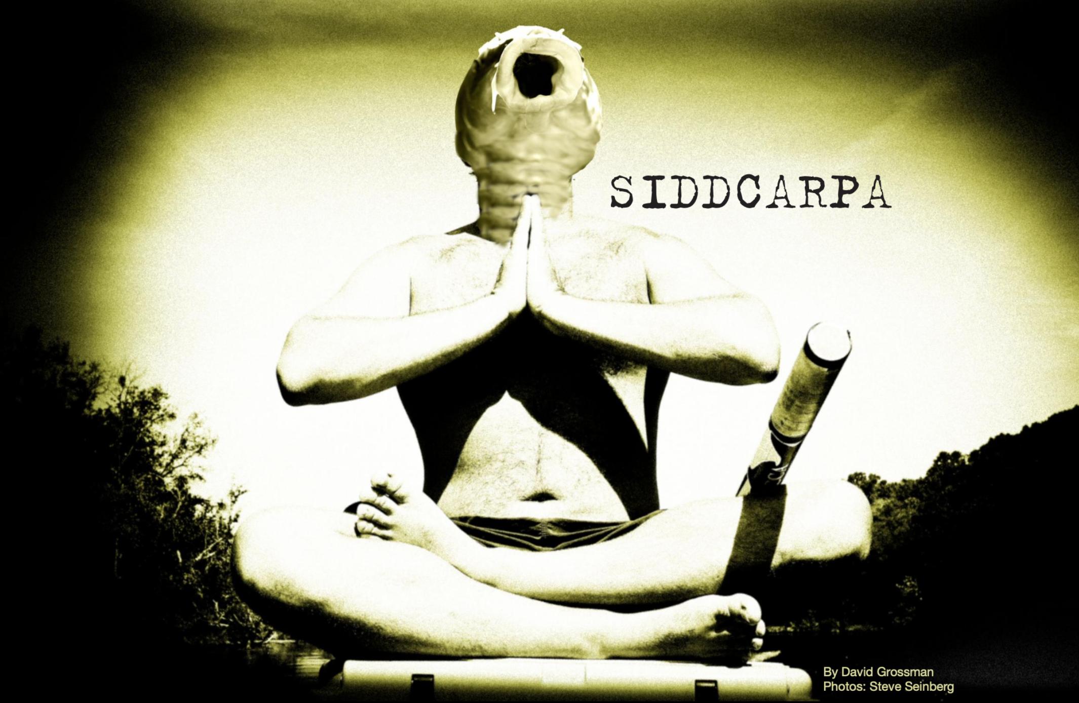 siddcarpa